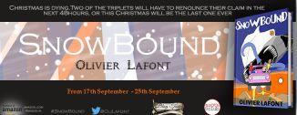 banner of snowbound blog tour .jpg